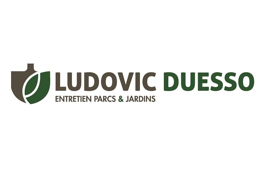 LUDOVIC DUESSO